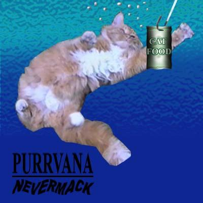 "Here, we have Purrvana: ""Nevermack"""